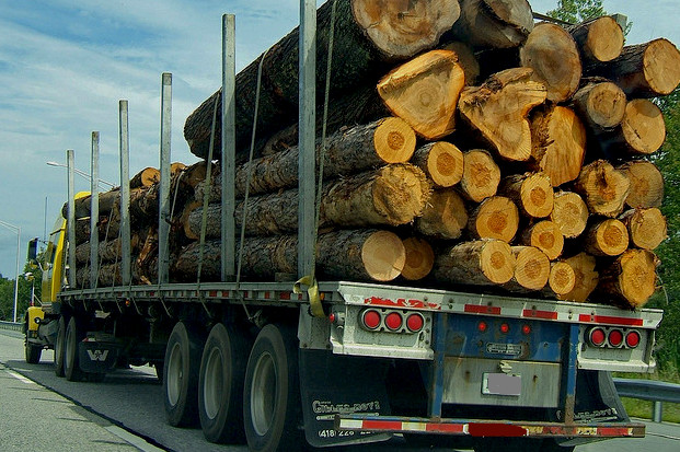 Overloaded truck accident -Logging semi Washington State Law